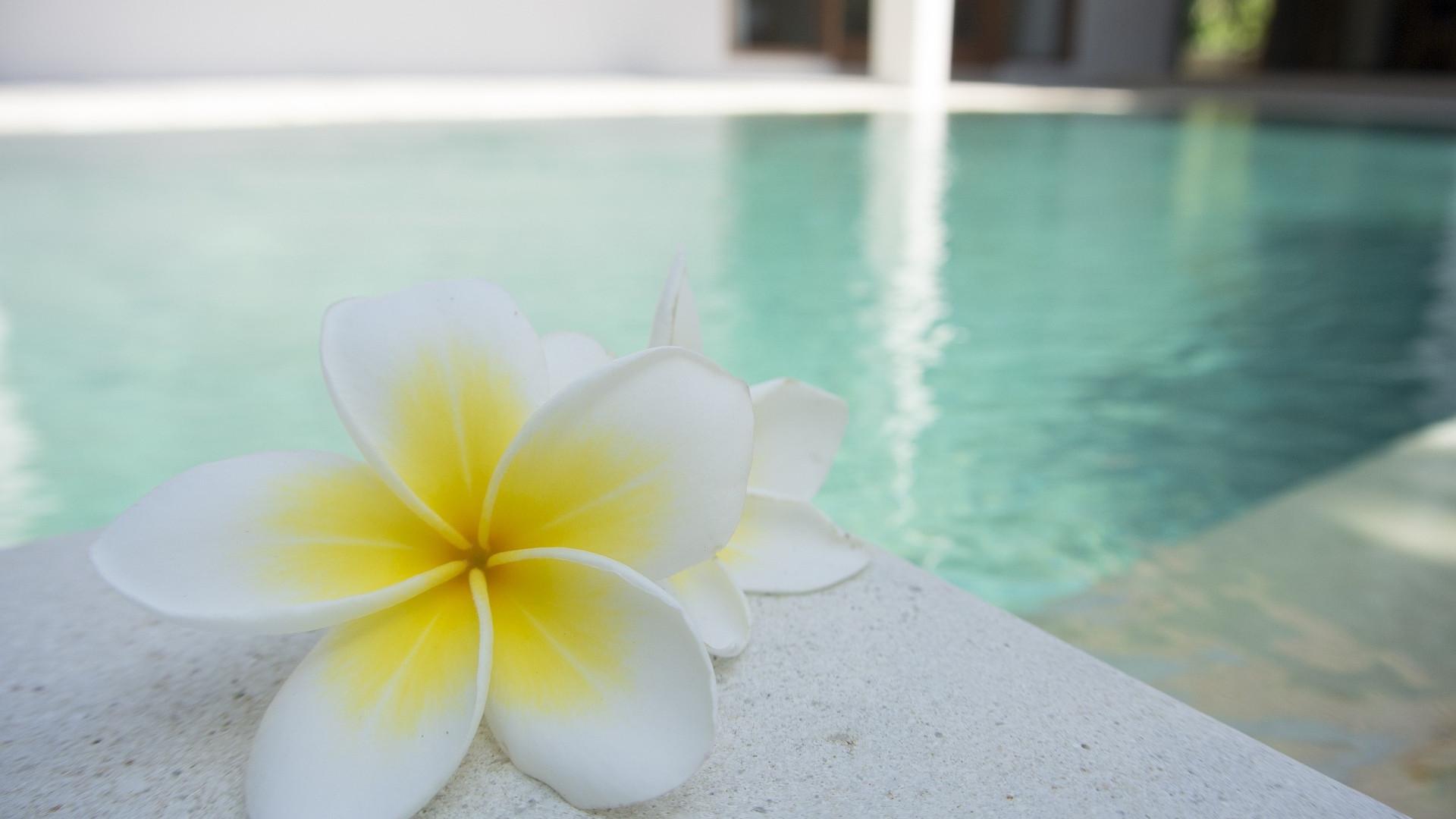 L'installation d'un spa à la maison est désormais abordable pour toutes les bourses
